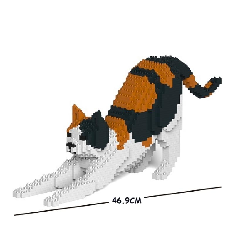 Jekca - Cat black& orange& with