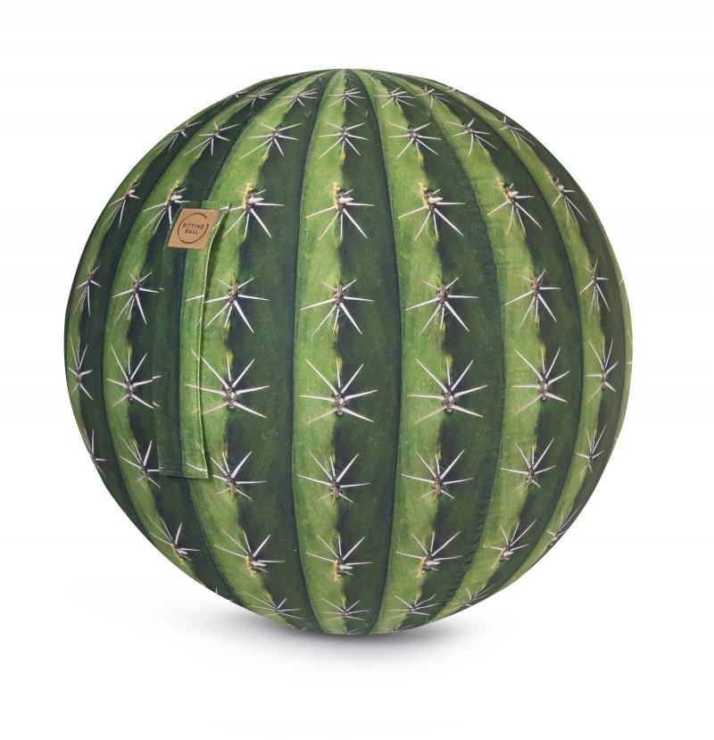 Sitzball - Kaktus