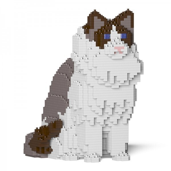 Jekca - Cat Ragdoll
